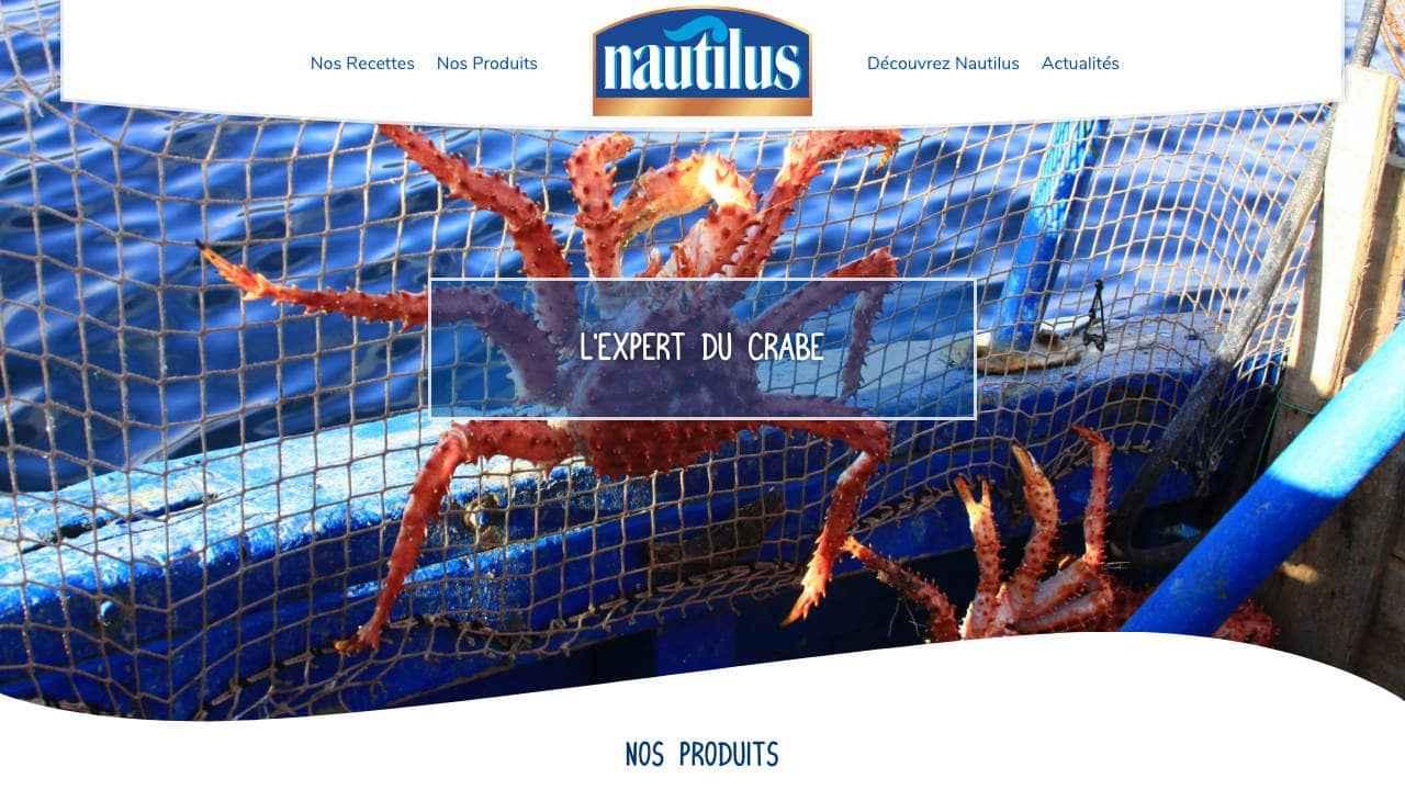 Page d'accueil site internet Nautilus